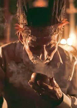 don romulo ayahuasca shaman kawsay retreat